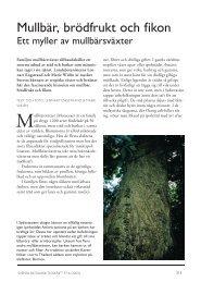 Häfte 97(6).indb - Svenska Botaniska Föreningen