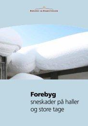 Forebyg sneskader på haller og store tage (PDF/1,5MB)