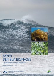 NOTAT, DEN BLÅ BIOMASSE