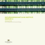 Naturwissenschaftliche Institute, Gebäude A, Grundsanierung (pdf