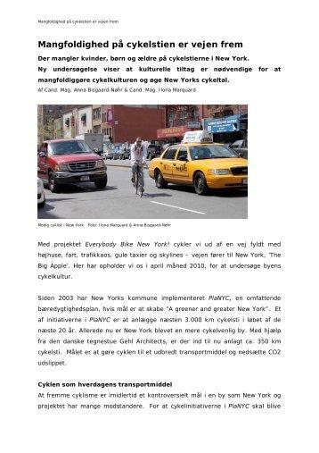 Mangfoldighed på cykelstien er vejen frem - Vejforum