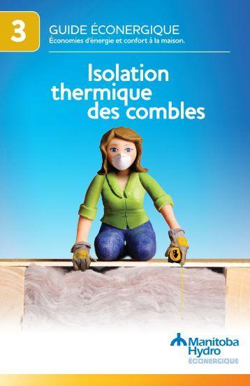 Isolation m canis e des combles perdus jetrock 005 point p for Isolation thermique des combles