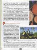 """S """" - Vents du Morvan - Page 2"""