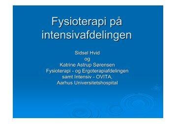 Diasshow_til_Holstebro1Katrine Astrup og Sidsel Hvid