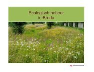 Waarom ecologisch beheer? - Gemeente Breda