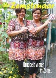 Druppels water in Zemst - De Zemstenaar