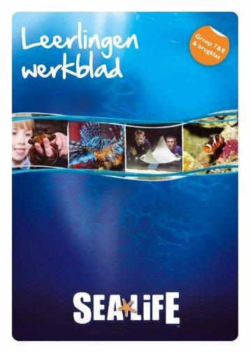 Groep 7-8 & brugklas deel 1 leerling werkblad - Sea Life