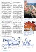 Zeemeerminnen aller landen verenigt u! - Vlaams Instituut voor de Zee - Page 4