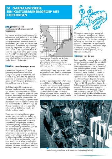 Garnalen - Vlaams Instituut voor de Zee