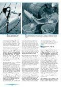 Garnalen - Vlaams Instituut voor de Zee - Page 2