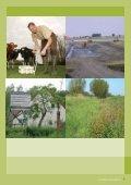Landelijke Inrichting - Vlaamse Landmaatschappij - Page 7