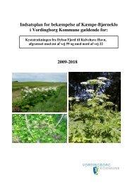 Indsatsplan for Vordingborg Kommune