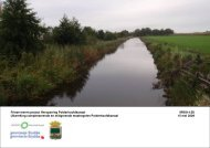 Uitwerking compenserende en mitigerende ... - Provincie Fryslân