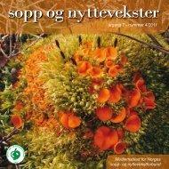 Nr 4 - 2011 i sin helhet - Norges sopp- og nyttevekstforbund