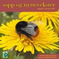Nr 2 - 2007 i sin helhet - Norges sopp- og nyttevekstforbund