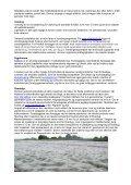 Økologisk dyrkningsvejledning for Hvidkål - LandbrugsInfo - Page 4