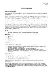 Projekt Find Holger - HK
