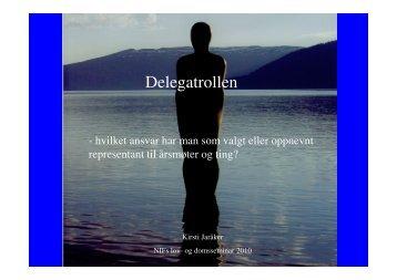 Delegatrollen – hvilket ansvar har man som valgt eller oppnevnt ...
