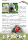 En bichon havanais er en kvik og lærenem hund, der ... - Hunden - Page 3