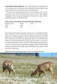 Stödutfodring av vilt - Svenska Jägareförbundet - Page 3