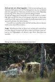 Stödutfodring av vilt - Svenska Jägareförbundet - Page 5