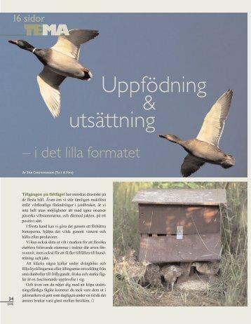 Uppfödning utsättning - Svenska Jägareförbundet