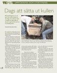 Uppfödning utsättning - Svenska Jägareförbundet - Page 7