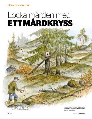 Ladda hem Svensk Jakts reportage (pdf)