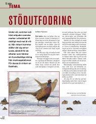 Stödutfodring