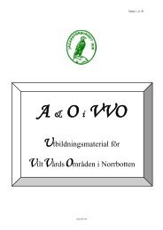 Studiematerial A & O i VVO