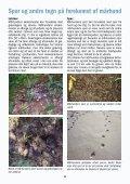 Mårhunden spreder sig i Danmark – hjælp med at bekæmpe den! - Page 6
