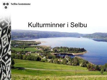 Selbu kommune