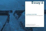 Boek PROmO - ESSAY 6 Kijk op Waterveiligheid ... - Leven met Water