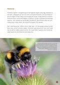 brochure - Provincie West-Vlaanderen - Page 5