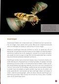 brochure - Provincie West-Vlaanderen - Page 7