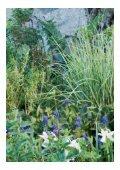 Blomskyar i himmelsblått möter klippta buxbomsklot - WSP Group - Page 3