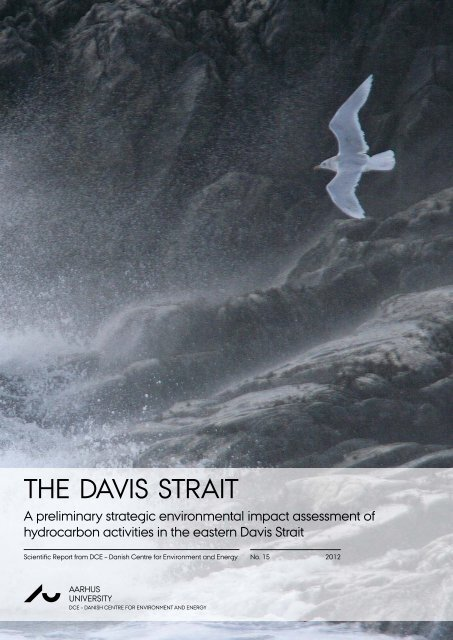 The Davis Strait - DCE - Nationalt Center for Miljø og Energi