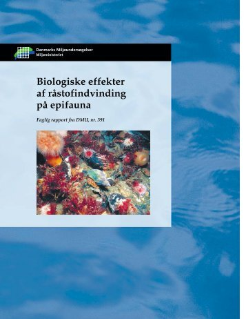 Biologiske effekter af råstofindvinding på epifauna, Faglig rapport fra ...