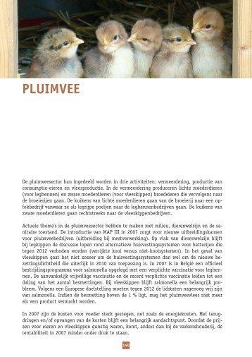 PluImvee - Vlaanderen