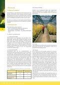 Koolzaad, van zaad tot olie - Vlaanderen - Page 5