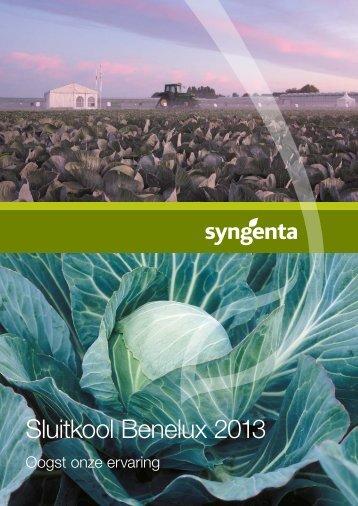 Sluitkool Benelux 2013 - Syngenta