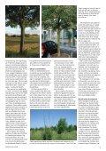 9 - Grønt Miljø - Page 5