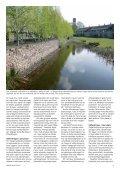 Istiden udslettede ikke fjeldenes skove - Grønt Miljø - Page 5