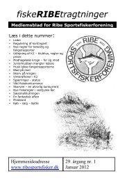 fiskeRIBEtragtninger - Velkommen til Ribe Sportsfiskerforening