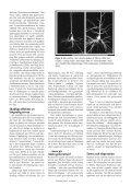 Stress och hjärtsjukdom - Institutet för biomedicinsk ... - Page 4