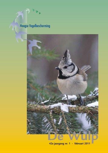 februari 2011 - Haagse Vogelbescherming