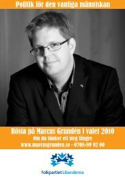 Rösta på Marcus Grundén i valet 2010 Politik för den vanliga ...