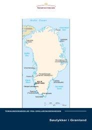 Søulykker i Grønland - Søfartsstyrelsen