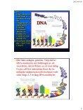 Genetik- läran om det biologiska arvet - Page 4