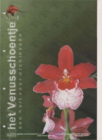 2000 - 1 - Orchideeën Vereniging Vlaanderen